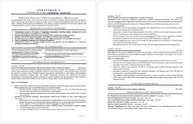 Certified Resume Writer Top Certified Professional Resume Writers Enchanting Professional Resume Writer