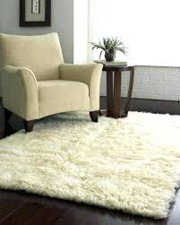 amusing rugs home goods photo 1 of 2 home goods area rugs rug wool outdoor inside