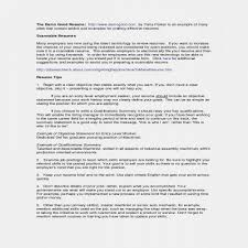 Lovely Professional Summary Examples For Resume New Judgealito Com