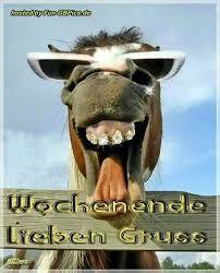 Schönes Wochenende Sprüche Lustig Bilder Und Sprüche Für Whatsapp