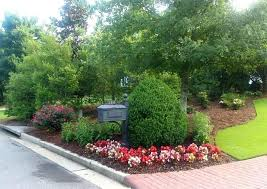 landscaping around mailbox post. Landscaping Mailboxes Pretty Mailbox Area With Boxwood Begonias Knock Out Roses Black Eyed A Around Post C
