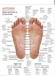 Foot Illness Chart Pin By Shelly Duffey On Essential Oils Doterra Essential