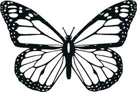 Butterfly Coloring Page Klubfogyas