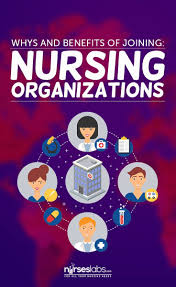 The 25 Best Professional Nursing Organizations Ideas On Pinterest