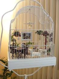 $22.49 quick view showing 1 of 1 150 Bird Cages Decorated Ideas Bird Cages Bird Cage Decor Bird Cage