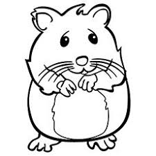 Coloring pages for hamster (animals) ➜ tons of free drawings to color. Top 25 Free Printable Hamster Coloring Pages Online Coloring Pages Animal Coloring Pages Animal Paintings