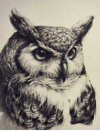 Owl Tattoo Realistic Black And White More Painting