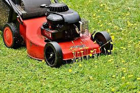 White neighbor calls police after Black child accidentally mows the wrong  lawn | New York Amsterdam News: The new Black view