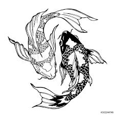 Fotografie Obraz Koi Fish Ying Yang Symbol Posterscz