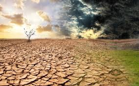 rain after drought poem analysis essay village haircouk rain after drought poem analysis essay