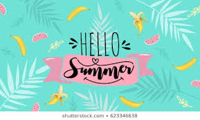 o summer banner trendy texture season vocation weekend holiday logo summer