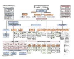 Management Chart Template Construction Project Management Organization Chart Template