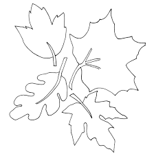 Small Picture Fall Leaf Coloring Pages 26697 Bestofcoloringcom