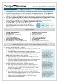 Sample Of Executive Resumes Executive Resume Samples Sarah Cronin Consulting
