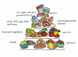 Balanced Diet Healthy Diet To Lose Weight Fast And Well