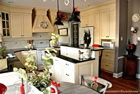 Cute Kitchen For Apartments Attractive Eas Bedroom Kitchen Apartments Photo Cute Studio