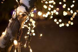 563054 background, bokeh, christmas ...