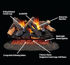 natural gas fireplace logs log features home depot natural gas fireplace