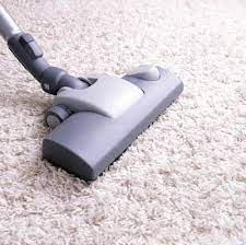 to clean vomit out of carpet