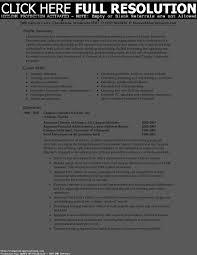 Brilliant Ideas Of Resume Professional Summary Sample With Job