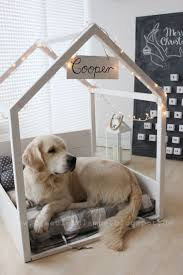 Diy Dog Bed 25 Best Diy Dog Bed Ideas On Pinterest Dog Beds Pet Beds And