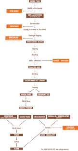 Flow Chart Of Chocolate Processing D R Machinery News