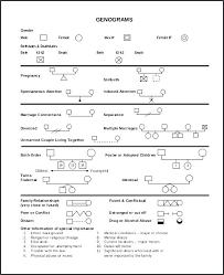 Free Genogram Template Template 1 Genogram Pdf Appinstructor Co