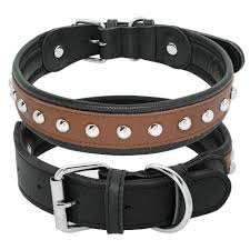 details about studded genuine leather dog collar for medium large dogs pitbull rottweiler m xl