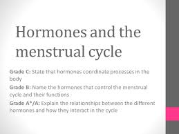 stem cell research and debate lesson plan outline ks to ks  gcse hormones and menstrual cycle