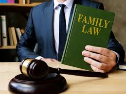Benefits of Hiring a Family Law Lawyer   Kids in the House