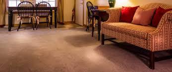 professional carpet cleaning brandon