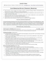 executive summary resume example examples wonderful  executive