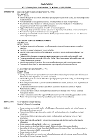 Customers Service Job Description Client Service Resume Magdalene Project Org