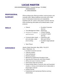 Best Jewelry Sales Associate Resumes Resumehelp
