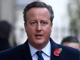 Guardian tightens Sunday editorial processes after David Cameron  'privileged pain' leader