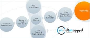 Professional Skill Set Skillset Mindsmapped