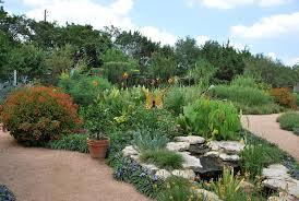 natural gardener austin tx velokitty tags flowers trees plants austin texas