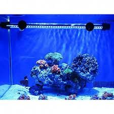 Fish Tank Accessories And Decorations Top 100 best Fish Tank Accessories for Decorations In 100 Reviews 61