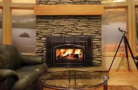 napoleon epi3c contemporary wood fireplace insert