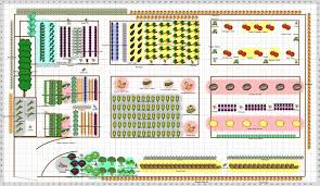 Small Picture Vegetable Garden Planner App Affordable Vegetable Garden Planner