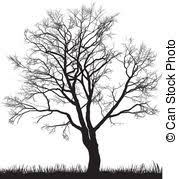 pecan tree clip art. Brilliant Tree Pecan Tree Illustrations And Clipart 102 Pecan Walnut Tree And Clip Art T