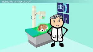 Admissions   Cornell University College of Veterinary Medicine Dayjob