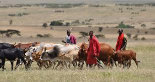 Farmers-herdsmen clash in Ekiti: …nobody was killed – Police …two persons were killed – Monarch