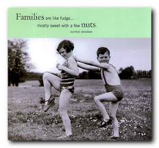 Funny Quotes About Family New Lettfrogudod Quotes About Family Funny