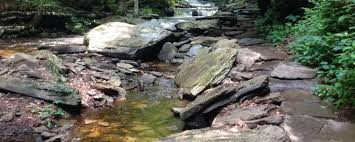 Maybe you would like to learn more about one of these? Best Camping In And Near Ricketts Glen State Park
