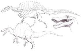 6 Spinosaurus Drawing Carnivore For Free Download On Ayoqqorg