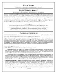Data Analyst Resume Example resume Business Data Analyst Resume 53