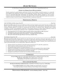 sales manager resume doc