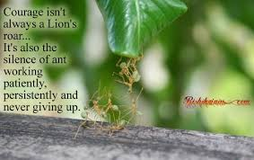 Courage isn't always a Lion's roar…It's also the silence of ant ...