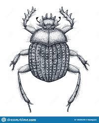 священный жук искусства татуировки скарабеев татуировка работы точки
